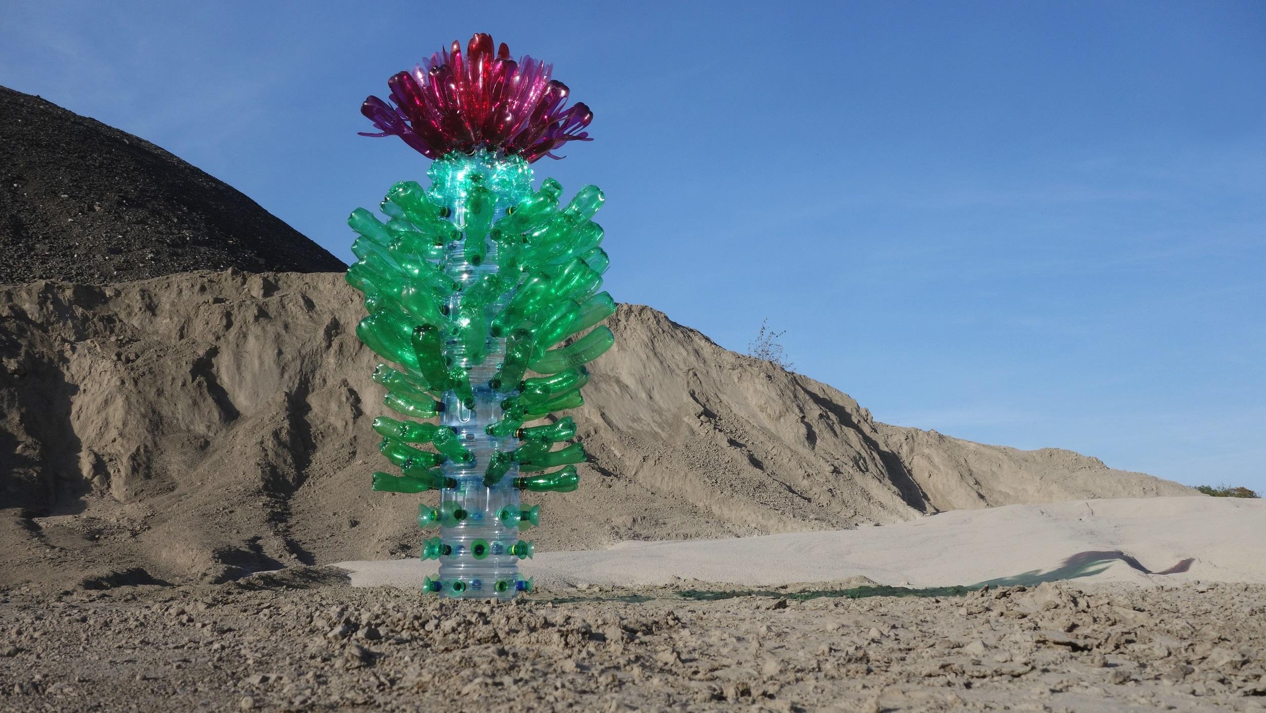 Kaktus in plastica riciclata di Veronika Richterová
