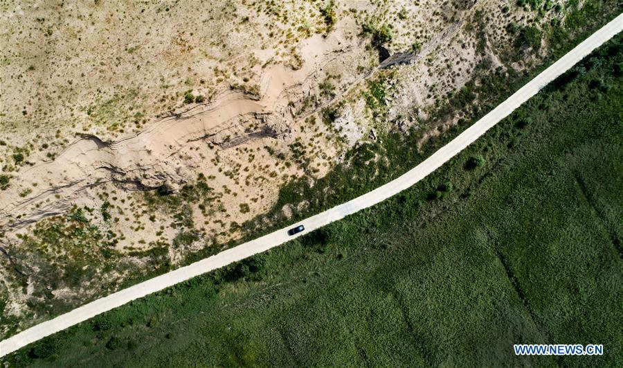 strada asfaltata con il deserto da un lato e la foresta dall'altro
