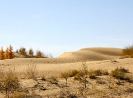 dune di sabbia vicino a una casa