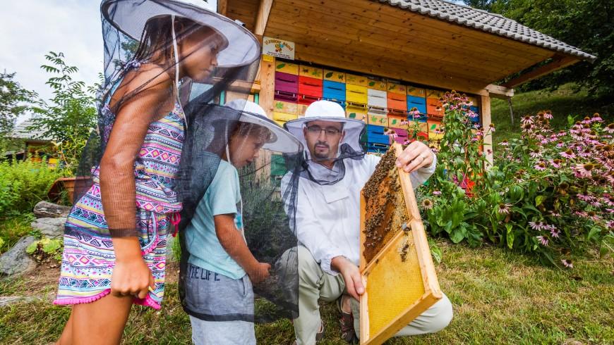 apicoltore mostra a una bambina una griglie di miele