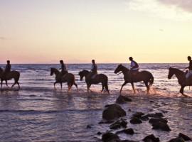 a cavallo sulla spiaggia turismo lento
