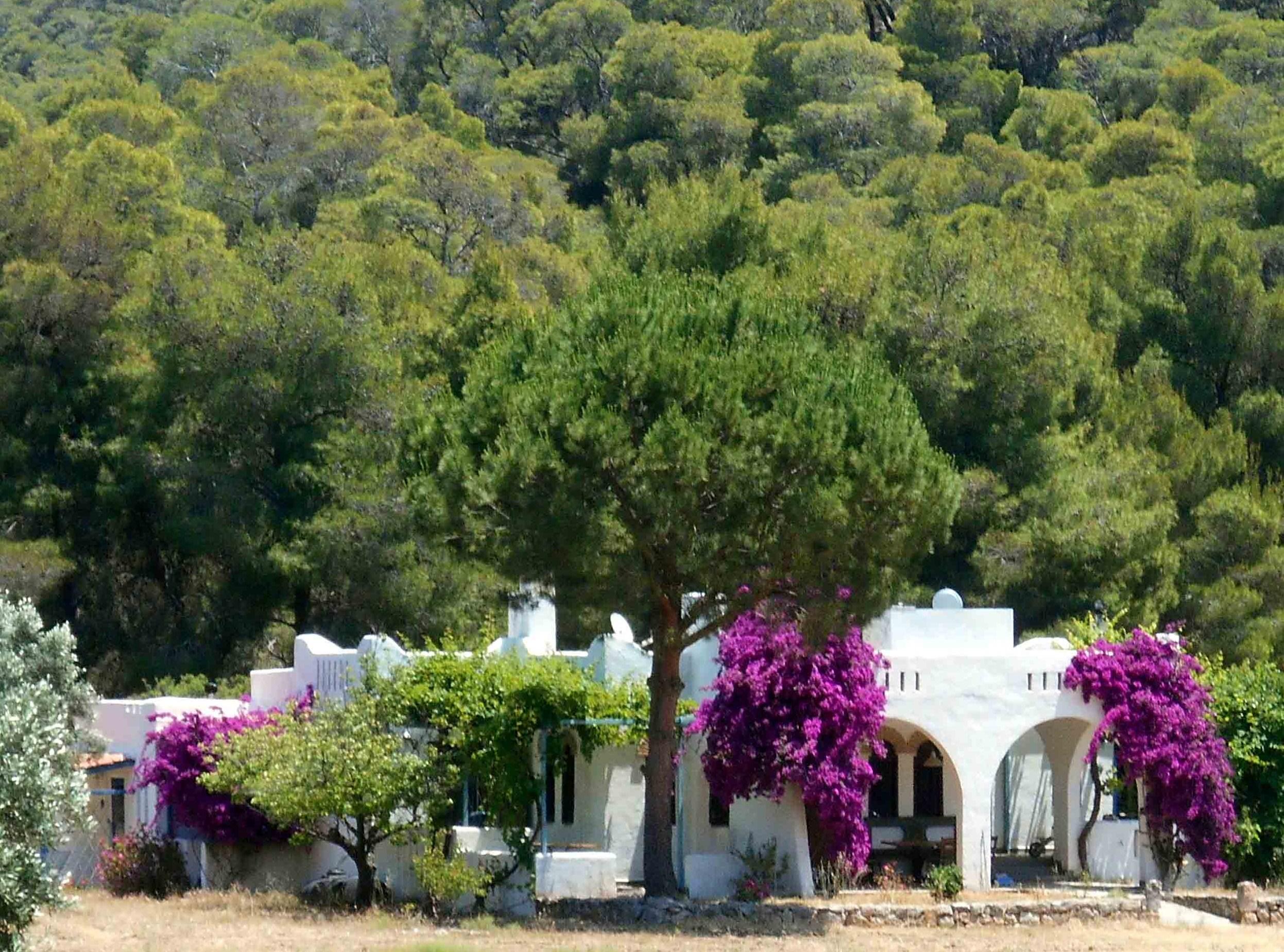 Agriturismo biologico in Grecia