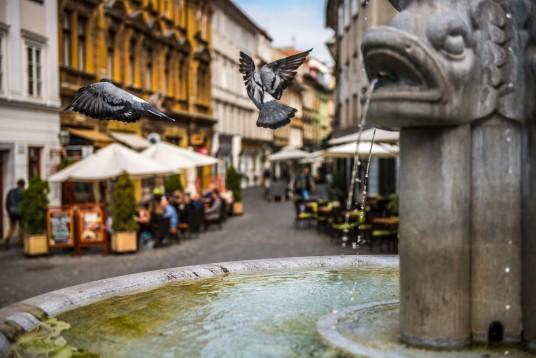 cetro storico di ljubljana