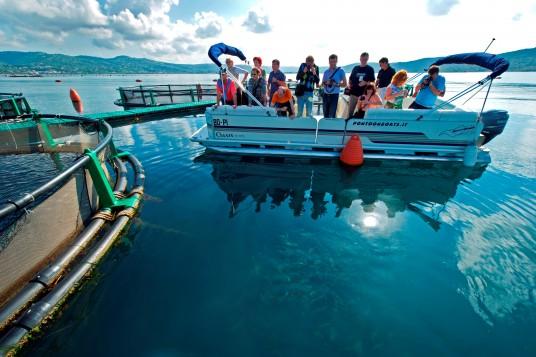 allavamento ittico fonda slovenia