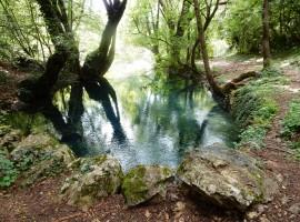 sorgente fiume grab