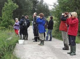 visitatori scattano foto al parco