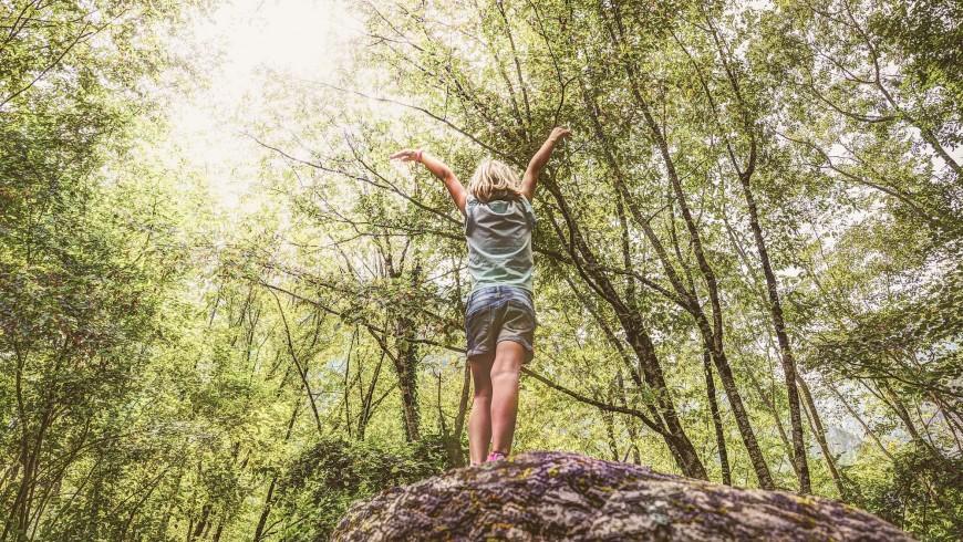Facciamo crescere i nostri bambini sugli alberi