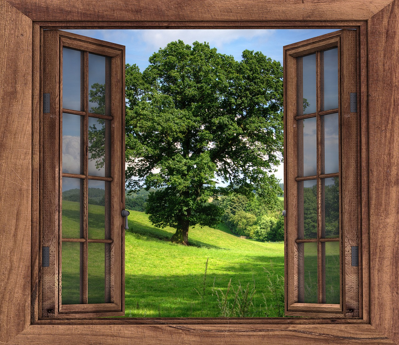 alberi intorno alla casa per raffrescare l'aria