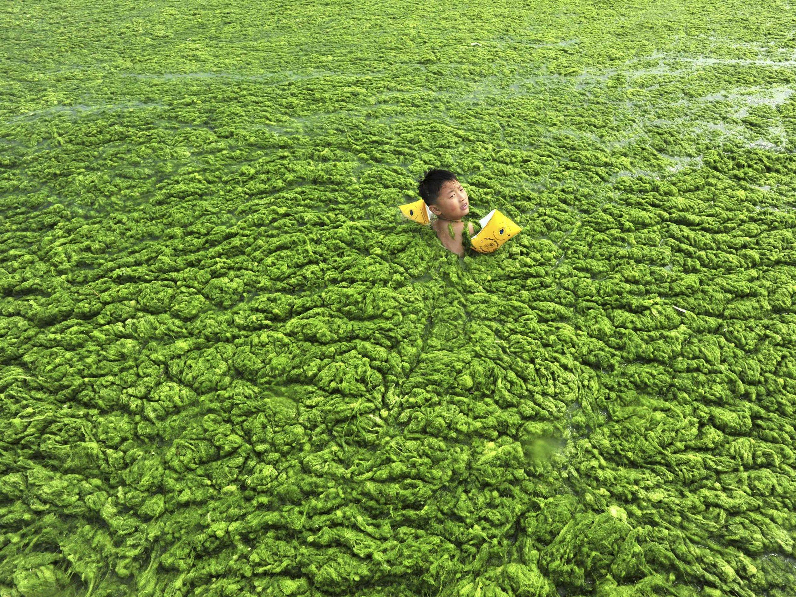 Inquinamento delle acque in Cina, fotografato