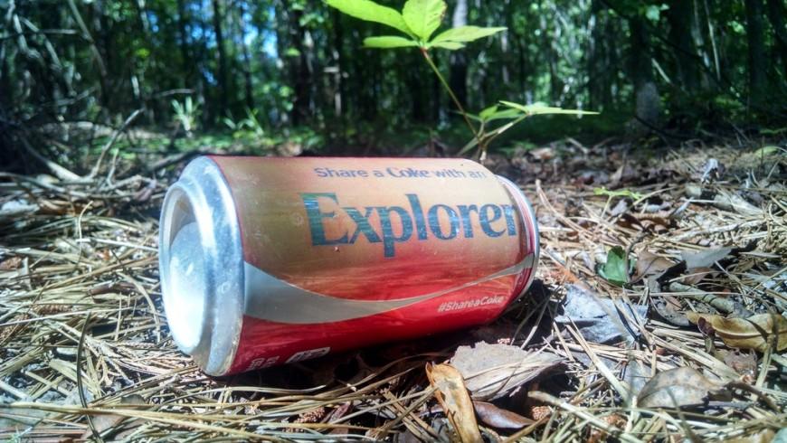 rifiuti nel bosco