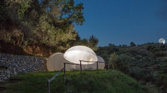 Green Bubble Room