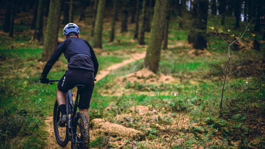 mountain bike nei boschi