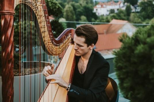 uomo suonando arpa per un concerto live