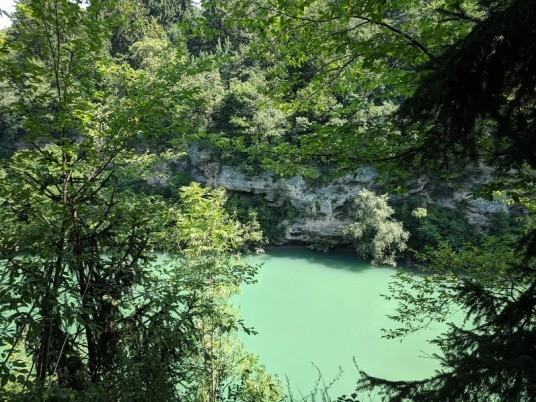 piccolo scorcio del fiume con natura che circond