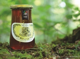 miele autoctono della slovenia