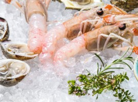 Tavern Boba Murter pesce fresco