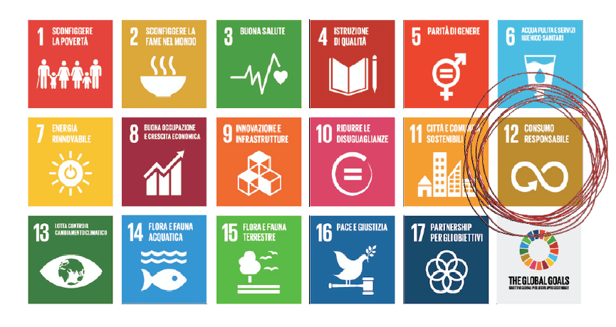i 17 punti dell'onu sull'agenda 2030