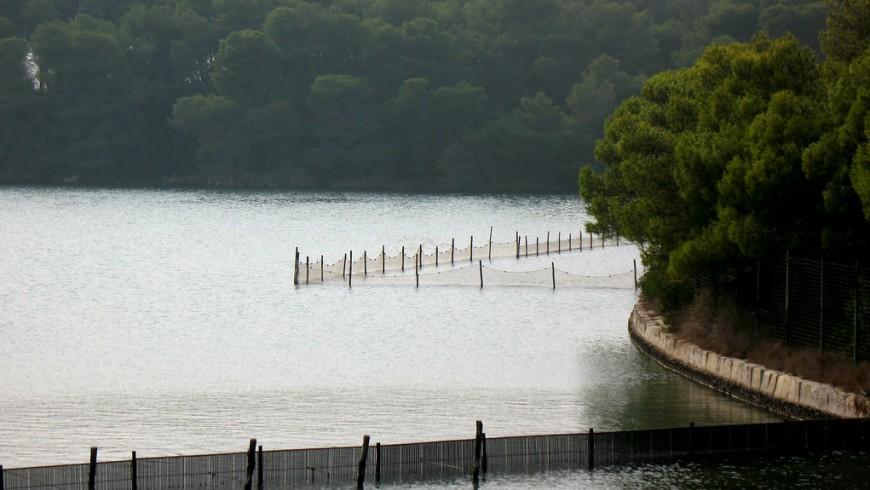Lago Alimini Grande con piccolo punto di attracco