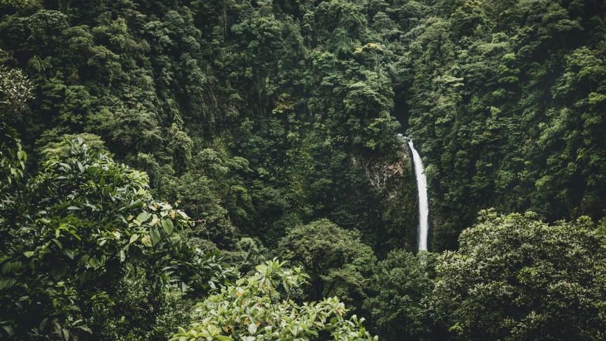 cascata nella giungla del costa rica