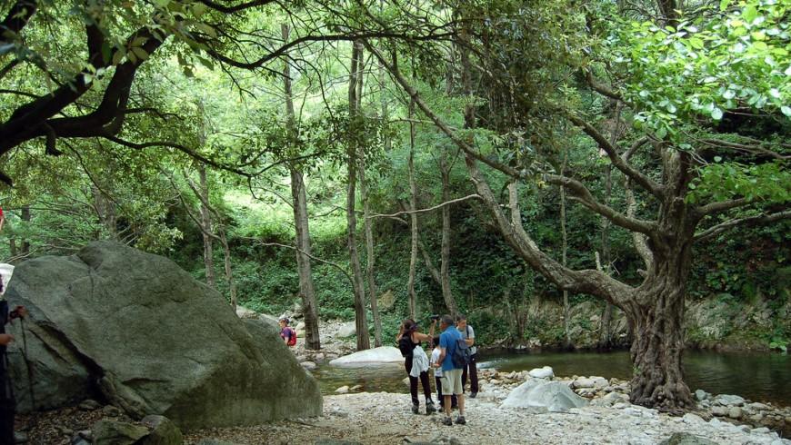 persone facendo il percorso di trekking per raggiungere la cascata