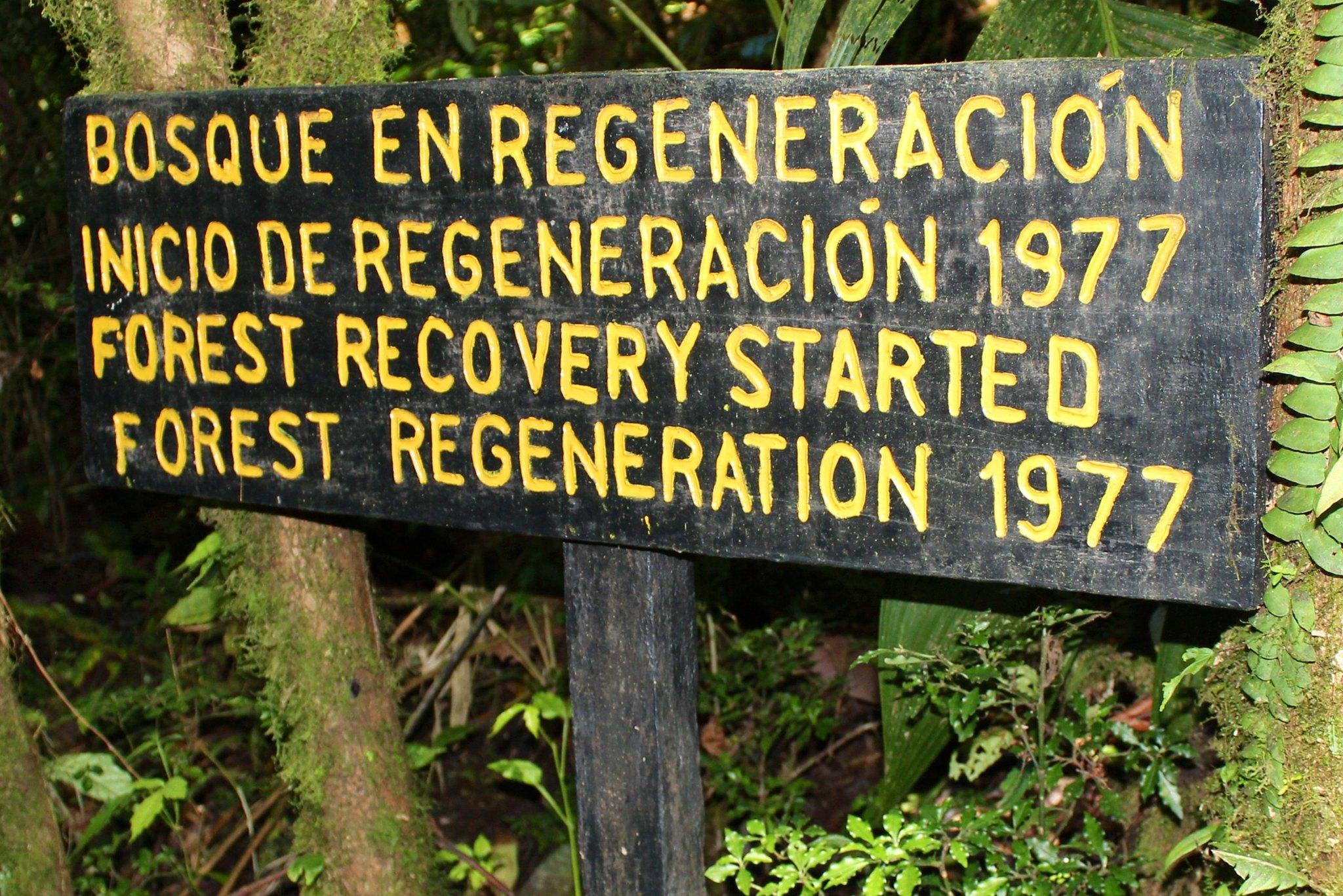 cartello avviso foresta in rigenerazione