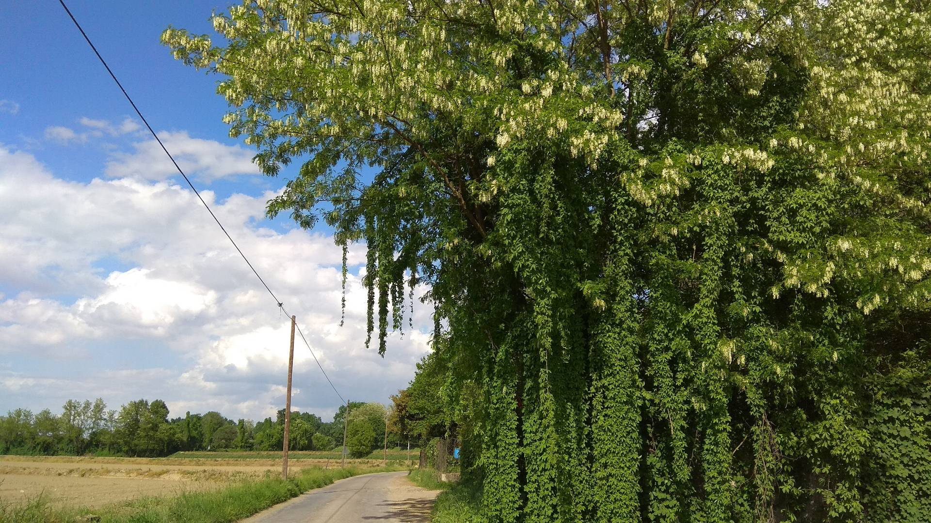 percorso lento nella campagna di Cremona