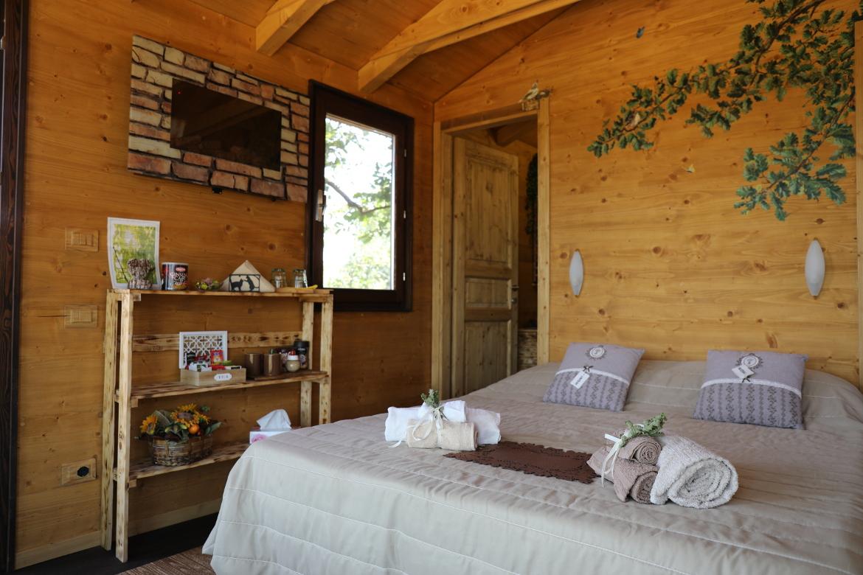 camera casa sulla quercia