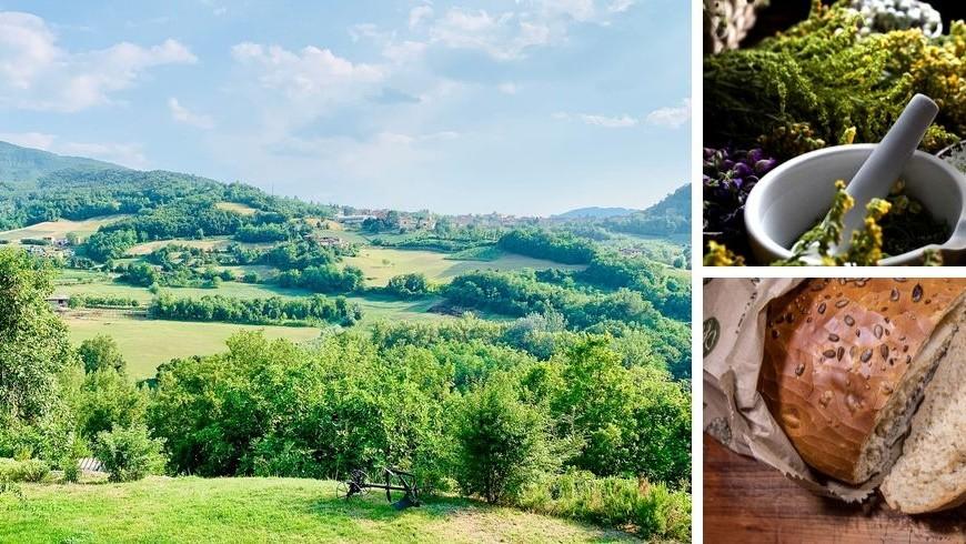 Ecobnb che propone agli ospiti pane fatto in casa con la pasta madre, e cucina utilizzando le erbe spontanee raccolte nei campi nei campi circostanti.