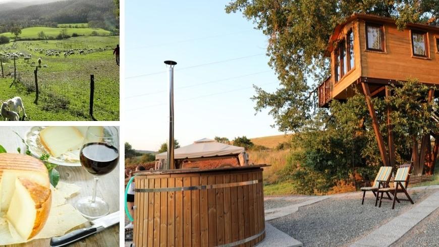 Ecobnb con casa sull'albero tra le colline di Grosseto