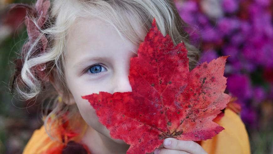 mostra ai tuoi figli la bellezza della natura, ad esempio il colore delle foglie autunnali