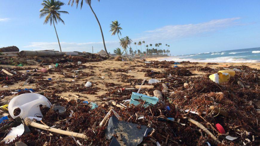 discarica nella spiaggia di punta cana