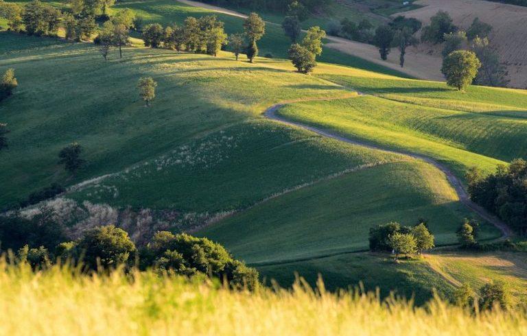 Sfumature di verde delle colline della Val Tassobbio
