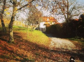Enchanting Hill in autunno