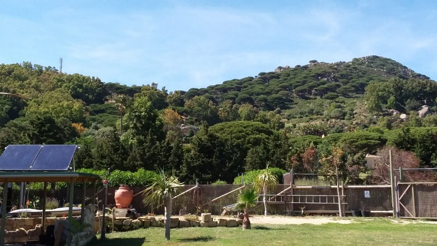 Creare un eco-glamping in Andalusia