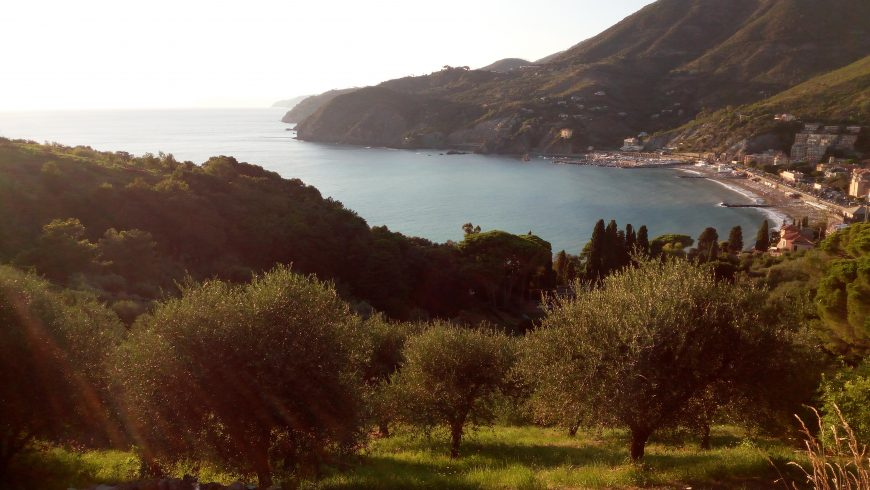 Vista panoramica su Levanto