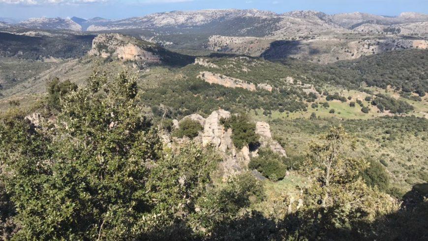 Foresta di Montes, Entroterra della Sardegna