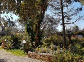 Soggiorni di benessere in Salento