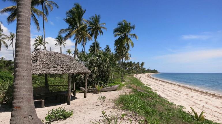 Osservare il mare in Tanzania
