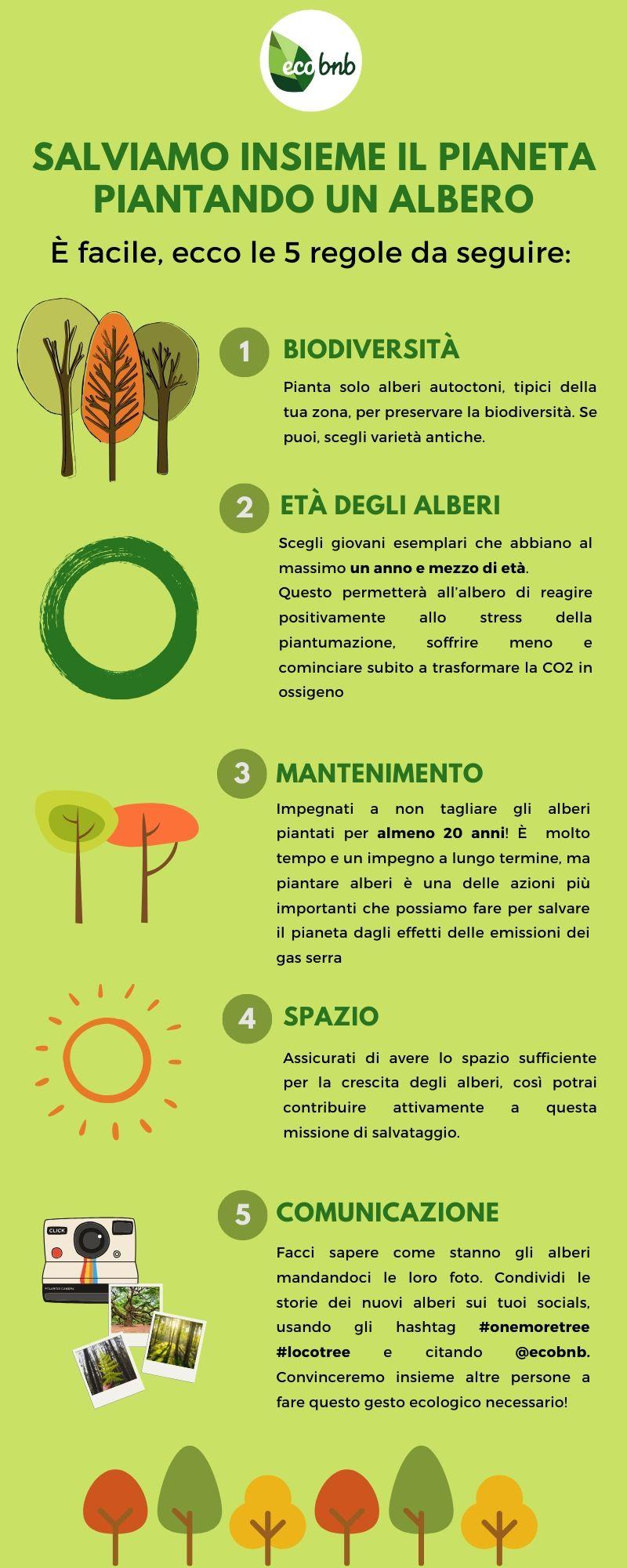 5 regole per piantare alberi con ecobnb