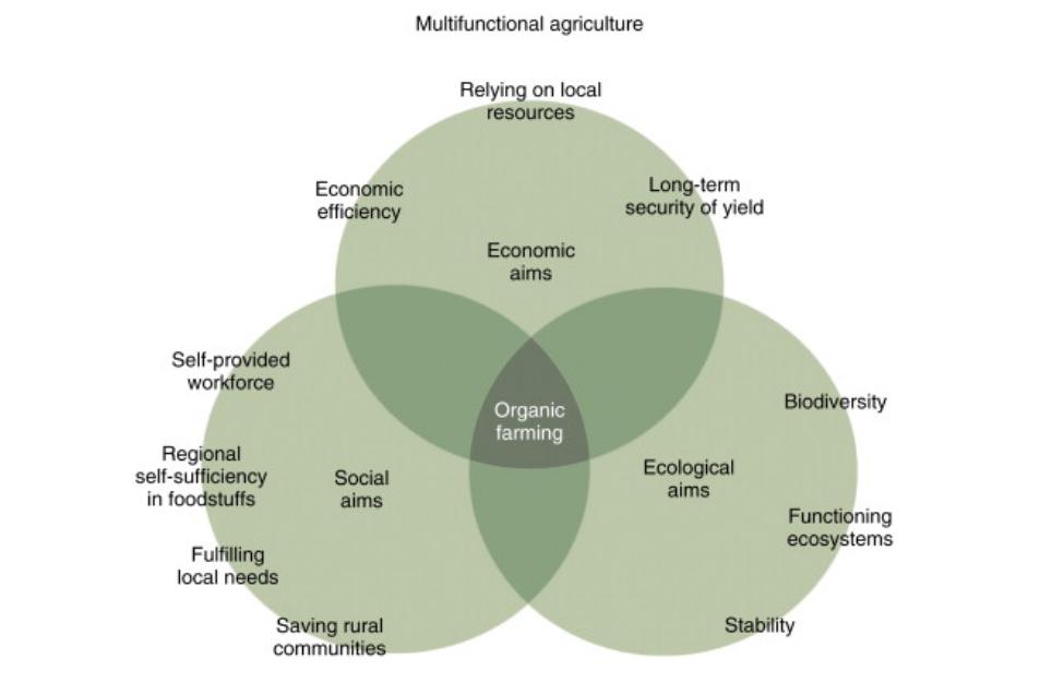 Schema agricoltura biologica