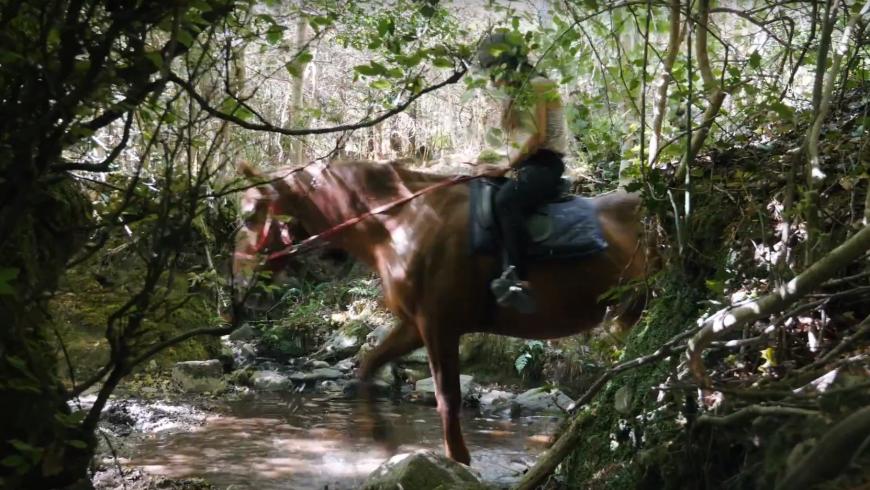 Vacanze a cavallo in Irlanda