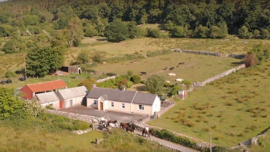 Natura e paesaggi incantati da esplorare a cavallo vicino a Three Tower Eco House