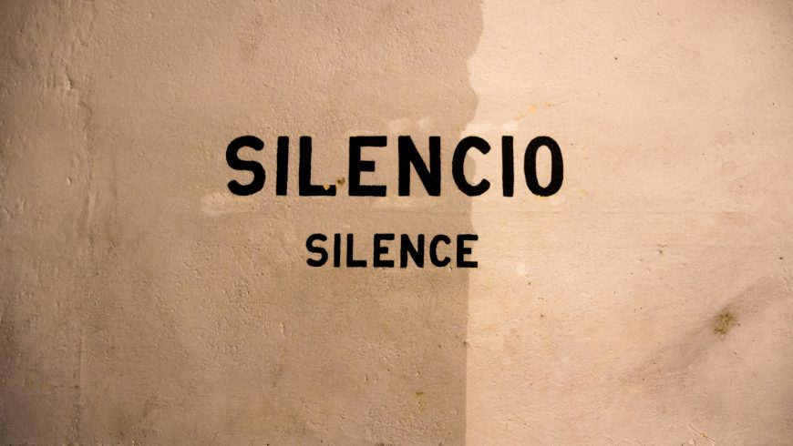Silenzio, per favore: una cura per il nostro cervello