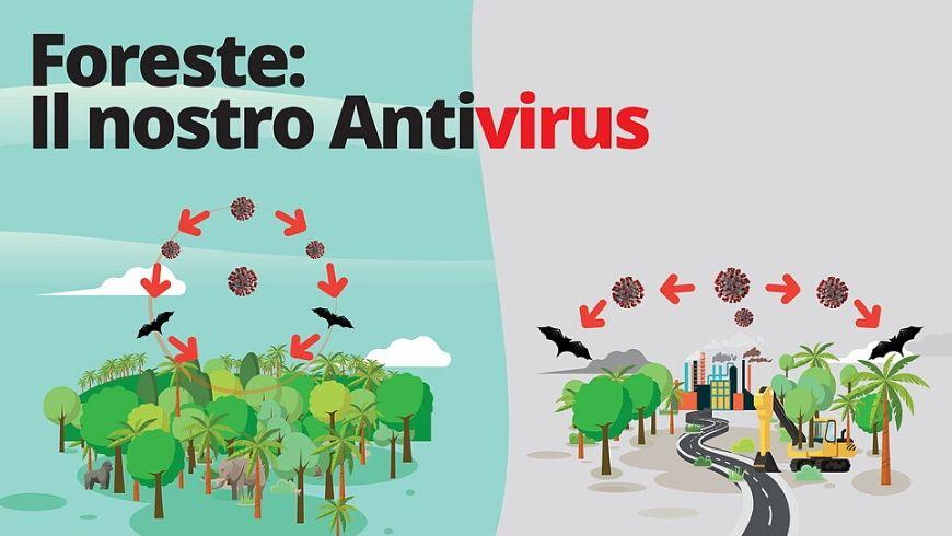 difesa dalla pandemia