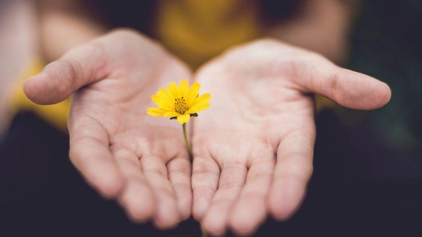 natura tra le mani