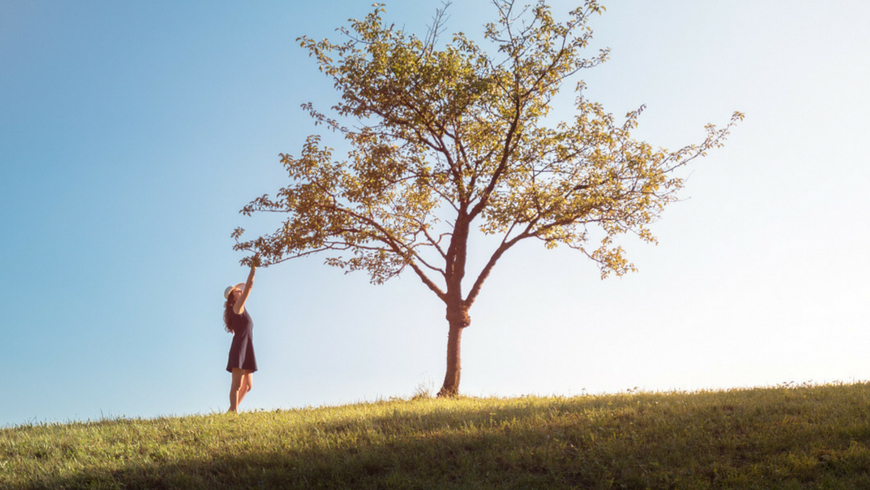 albero e rapporto uomo natura