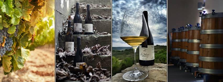 Azienda vinicola Clai