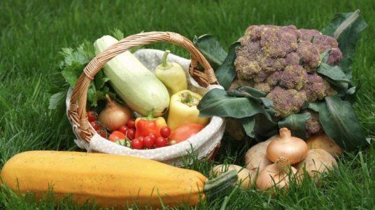 verdure locali e biologiche