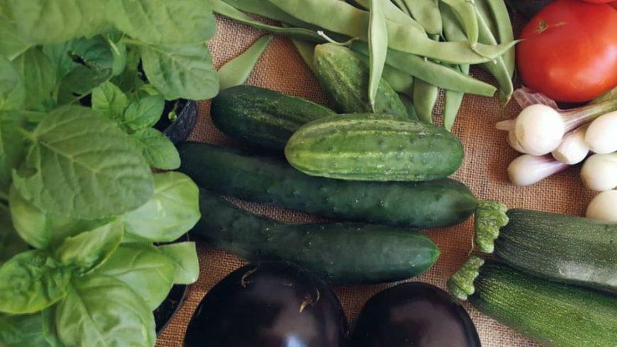 Alimenti biologici Eko Siljan