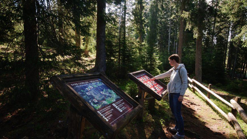 Parchi naturali Slovenia